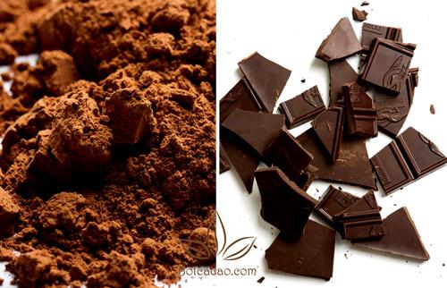 bột cacao và socola 1