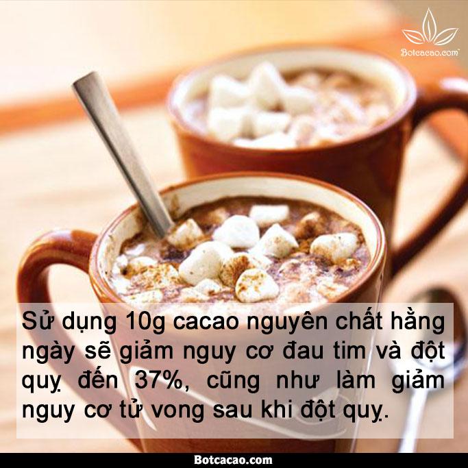 lợi ích từ cacao 5