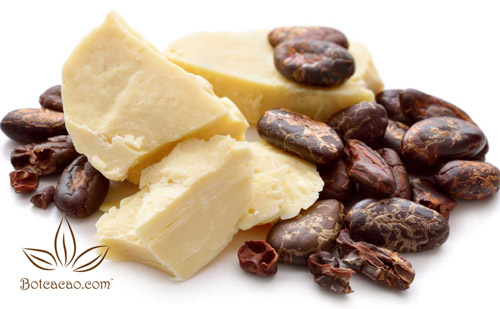 lợi ích của bơ ca cao 2