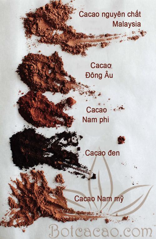 màu sắc bột cacao