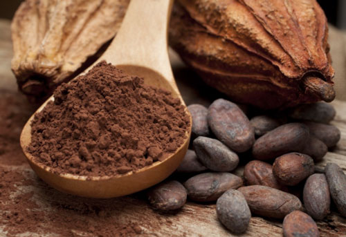 Cacao-and-Cacao