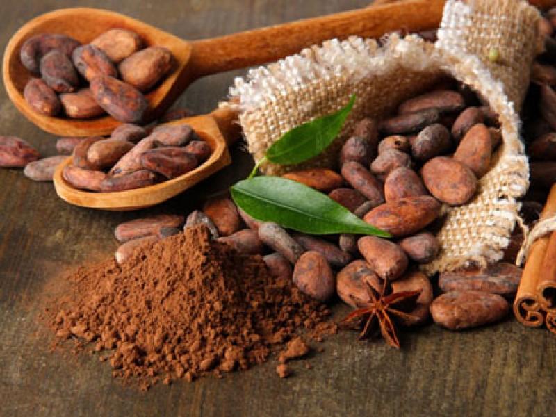 Liệu cacao sẽ thay thế cà phê trong tương lai ?