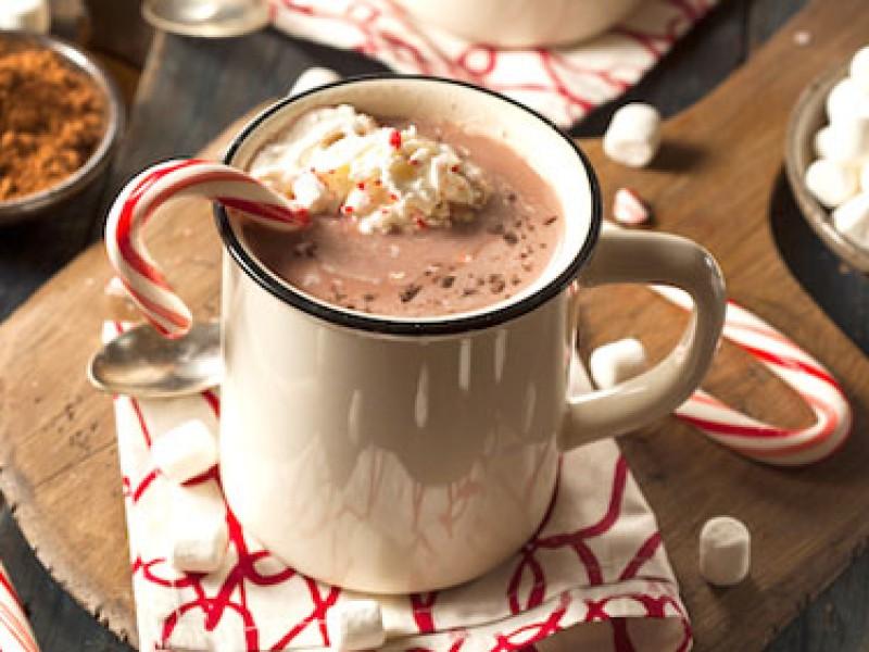 Hướng dẫn pha sữa chocolate ngọt ngào từ bột ca cao