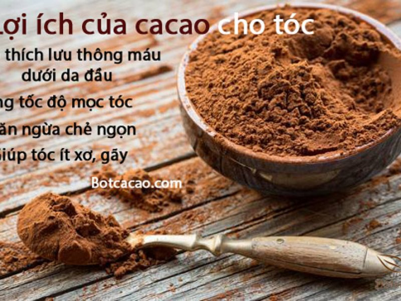 Mặt nạ dưỡng tóc mềm mượt, mau dài từ cacao nguyên chất