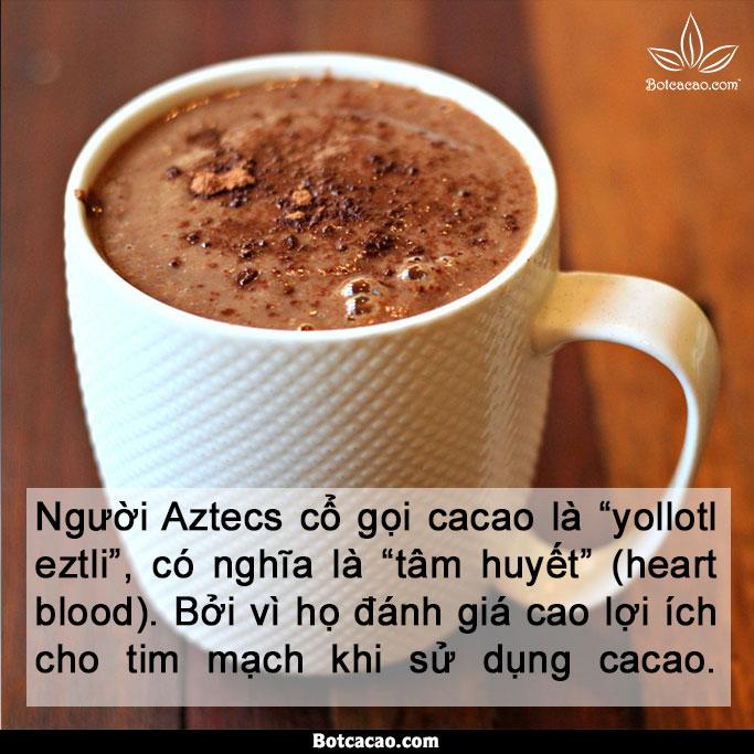lợi ích từ cacao 6
