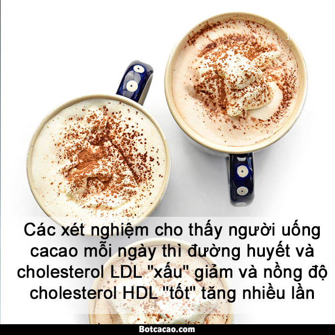 lợi ích từ cacao 7